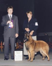 1998 Zevvi