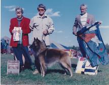 1995 Nesco