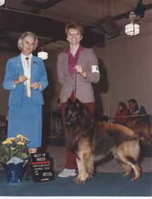 1989 Dancer