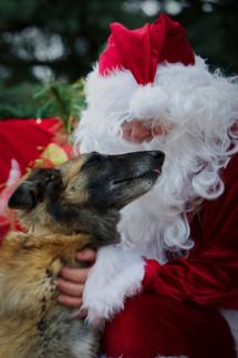Bayou & Santa