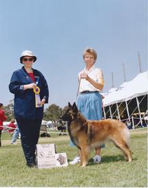 1999 Halle