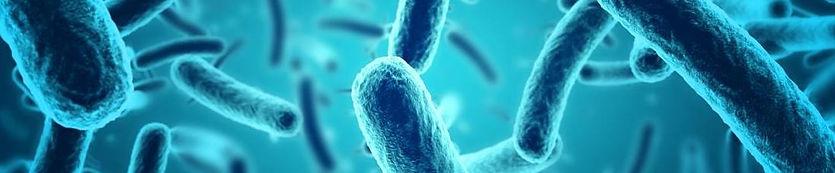 bacteria2.jpg