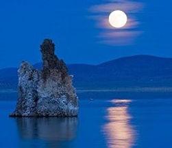 Moonight.2.jpg