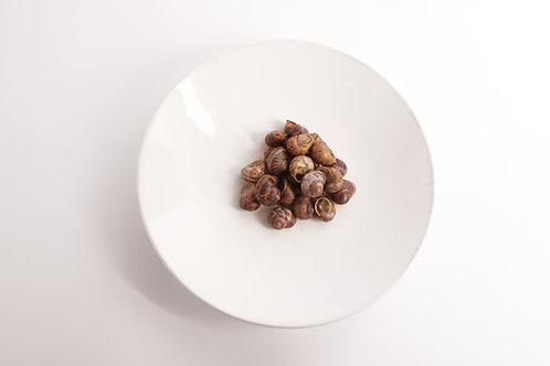 Peconic Escargot - In Shell - 2 Dozen (24 pcs) - Fresh