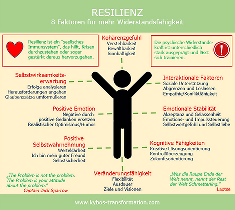 Resilienzfaktoren.png