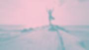 marion-michele-hOj3-0lTK8E-unsplash_edit