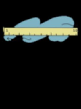 illustration - measure.png