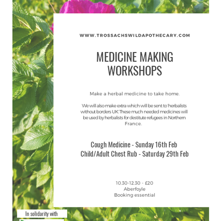 Medicine making workshops for herbalists without borders