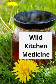 Wild food and kitchen medicine workshops
