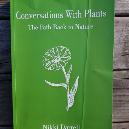 Book Review: Conversations with Plants – the Path Back to Nature