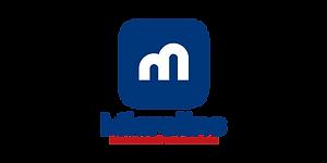 Microlins-Logo.png