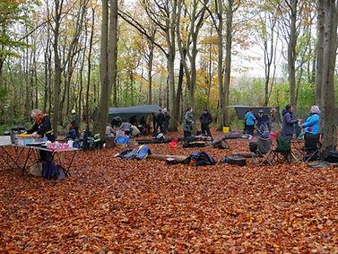 Friston Forest 2.JPG