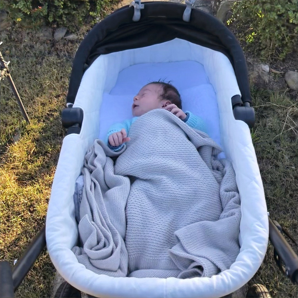 Baby Lucy in her pram, ready to see the world