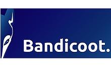 Bandicoot288x172.png
