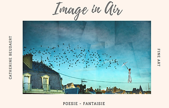 Image in Air by Catherine Beudaert.png