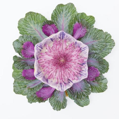 platos y flores 1