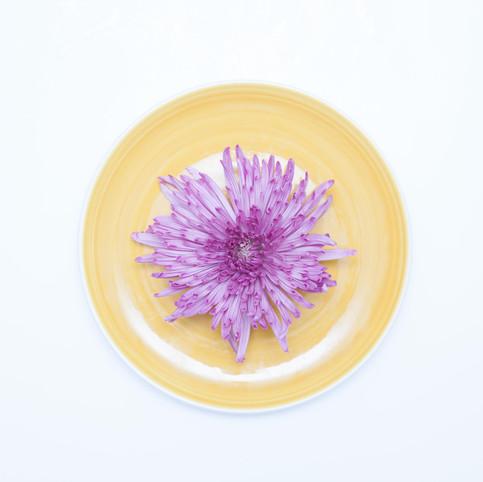 platos y flores 2