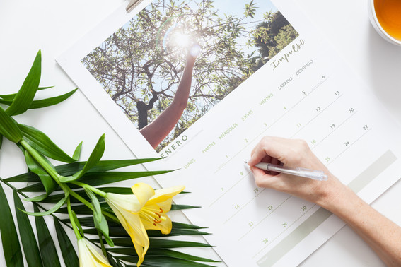 Calendario Jaque al Cancer 2019