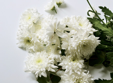 Un ramo de flores blancas