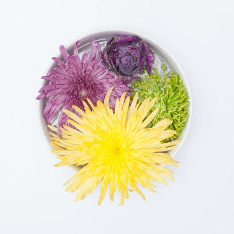 platos y flores 3