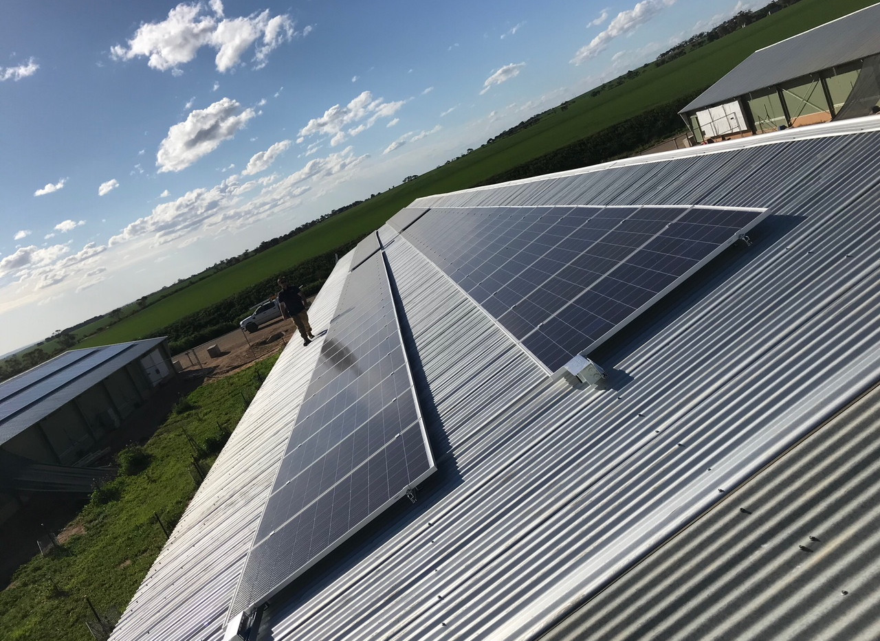 Southern Cross Farms-3.jpg