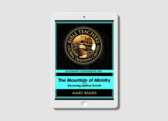 The Mountain of Ministry: Discerning Spiritual Growth (Volume 1) -  E-Book