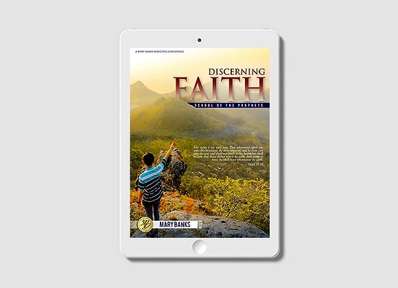 Discerning Faith - E-Book