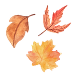 leaves 01.png