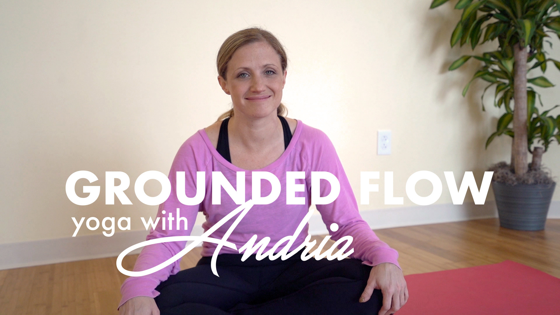GROUNDED FLOW: ANDRIA