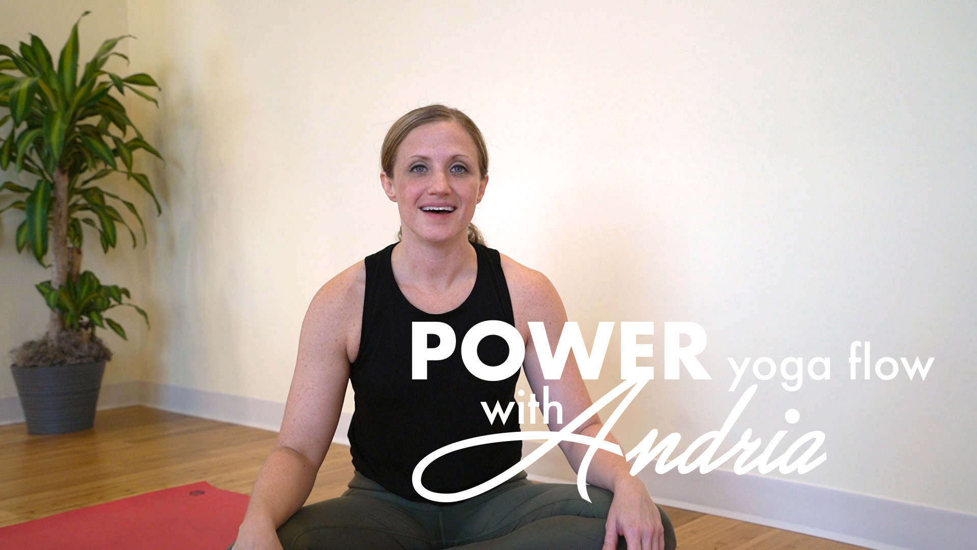 POWER YOGA FLOW: ANDRIA [part II]