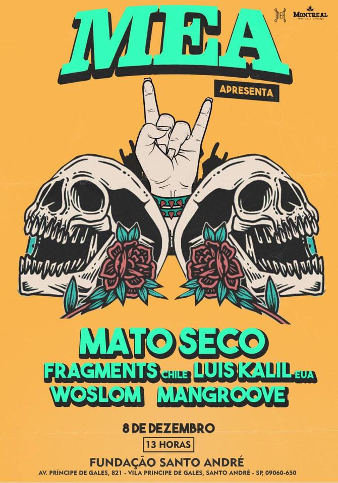 Banda Mato Seco faz show gratuito em Santo André
