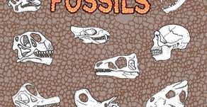 Moschops – Skratch Fossils 12″ + Looper