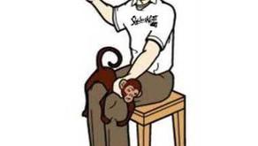 Status kuts – Monkey Spank Breaks