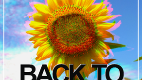 DJ A – Back To Nature