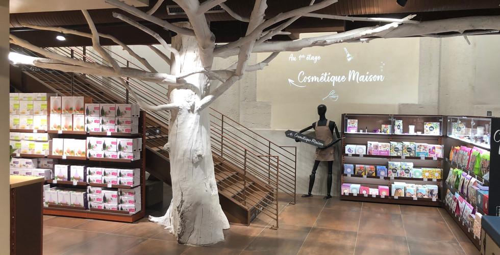 Faux arbre en bois flotté recyclé sur mesure et branchage au plafond magasin cosmetiques bio AROMA ZONE LYON