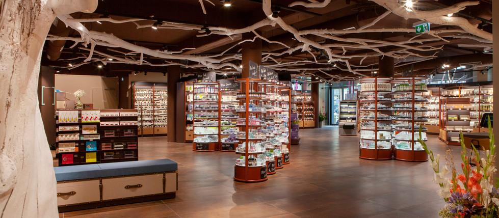 Arbre décoration bois flotté branchage plafond magasin cosmetiques bio AROMA ZONE LYON