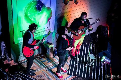 Trio Enrico & Snoopy Project