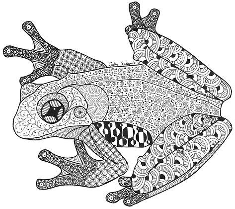 Frog - Unframed Print