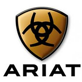 Screenshot-2018-8-13 ariat logo - Google