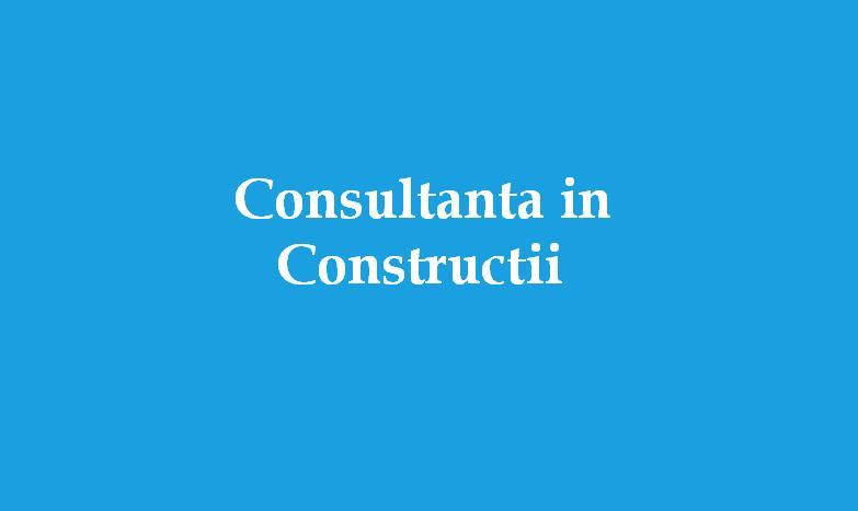 Consultanta in constr.JPG