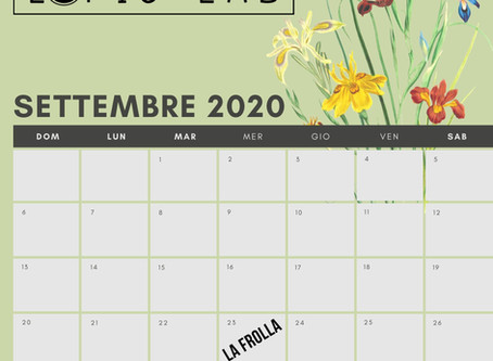 CORSI E WORKSHOP 2020