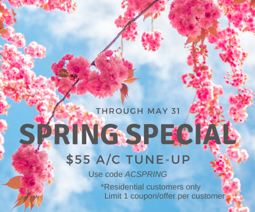 2020 Spring Special $55 (1).png