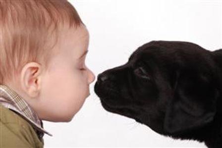 boy and puppy.jpg