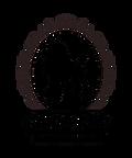 Salon-154 logo.png