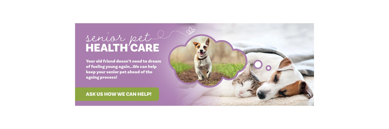 web slider Senior Health Package (1)