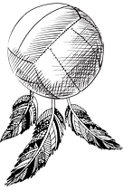 Volley Cathcers Logo.png