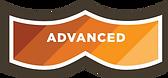 Level4_advanced.png