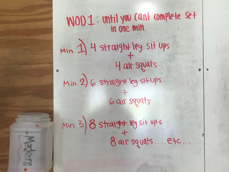 CFL home wod: day 44