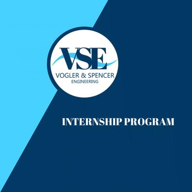 VSE Internship Program