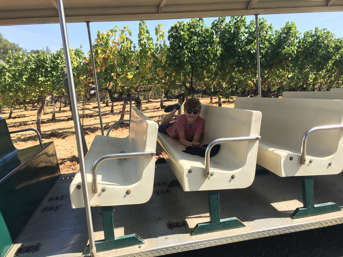 Tour de Vineyard